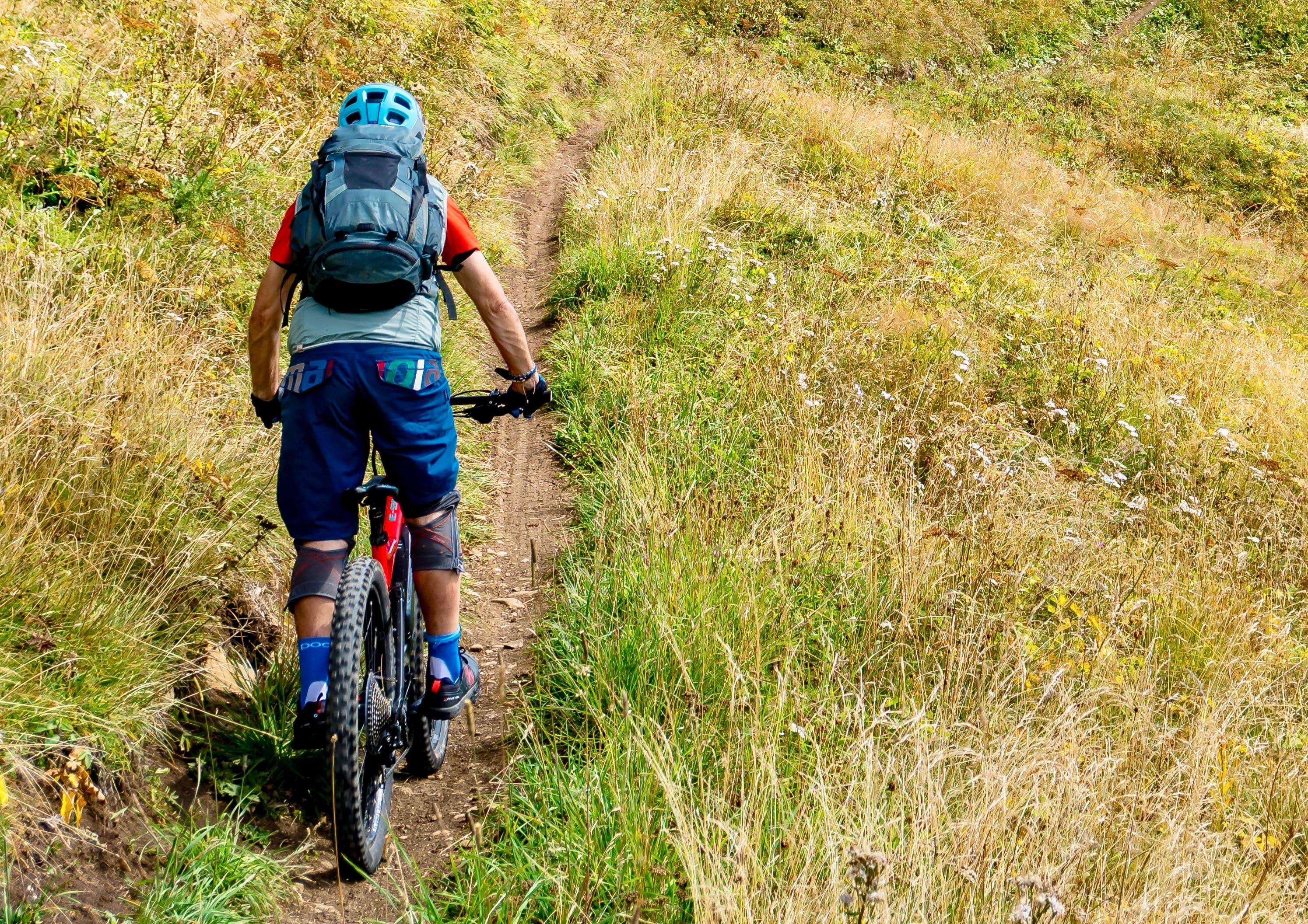 Explorar la hermosa naturaleza en una excursión en bicicleta de montaña