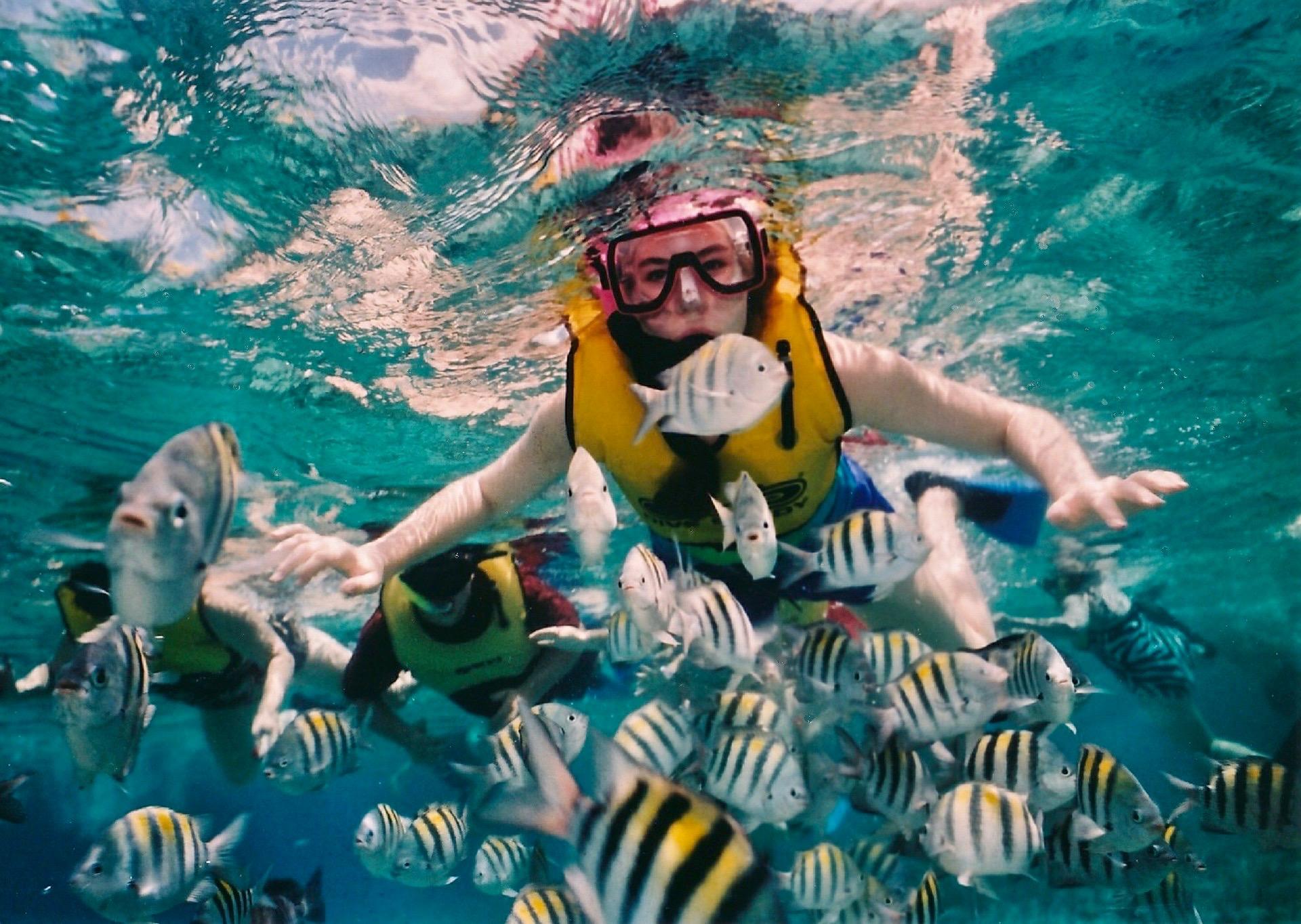 Personas haciendo snorkel rodeados de un gran grupo de peces de colores.