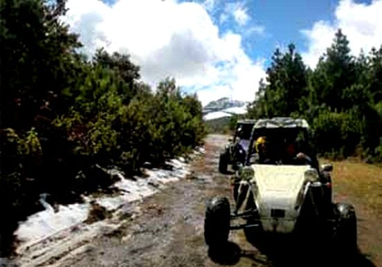 buggy tour in La Palma volcanic route