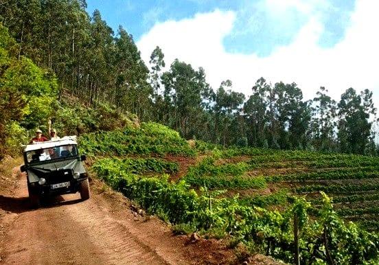 Jeep safari tour in West Madeira