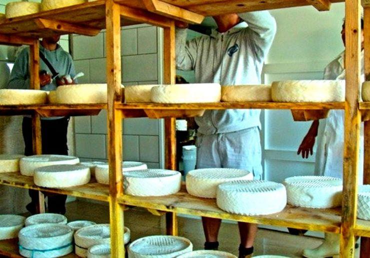 Fuerteventura 4x4 tour with cheese tasting