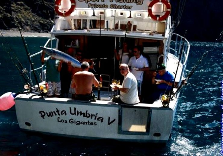 Equipped sport fishing fleet Los Gigantes