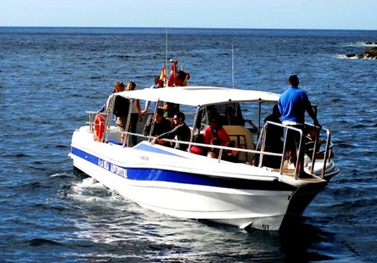 Water taxi ride from Los Gigantes and Masca