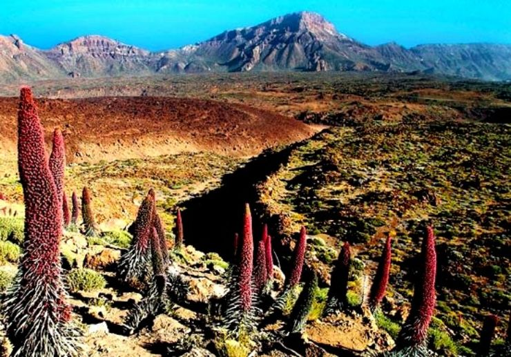Breathtaking view of Teide National Park