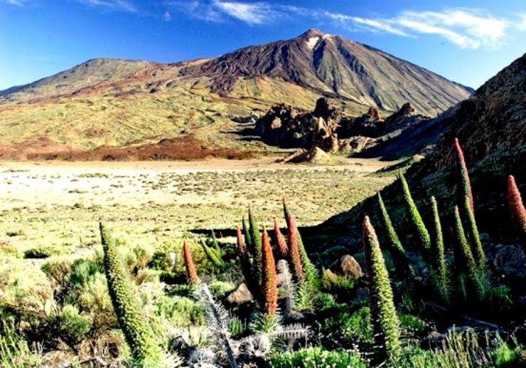Breathtaking scenery of Tajinaste Teide