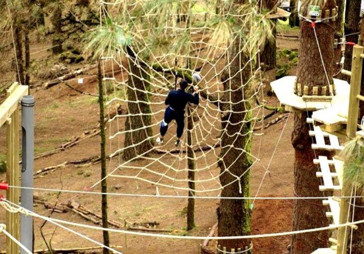 Outdoor activities at Forestal Park in Tenerife