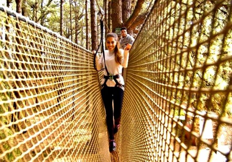 Tenerife outdoor adventure at Forestal Park