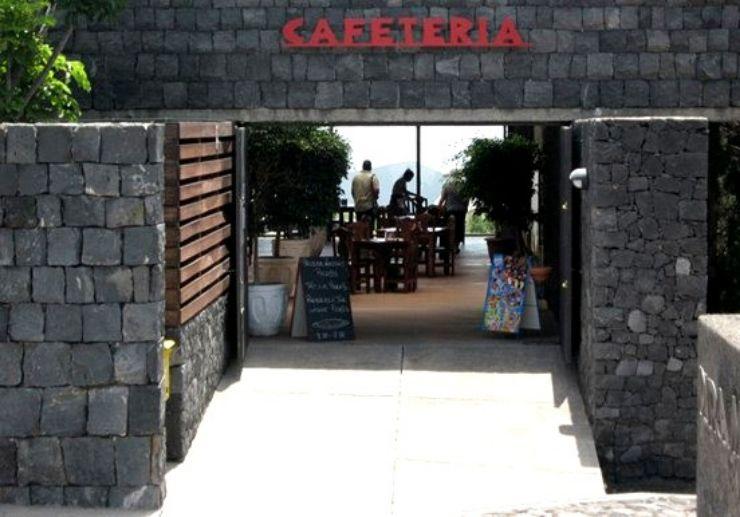 Cafeteria at Pirámides de Güímar Tenerife