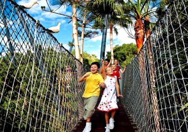 Katandra Treetops hanging bridge Loro Park Tenerife
