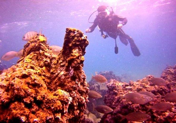 Discover underwater diving Lanzarote