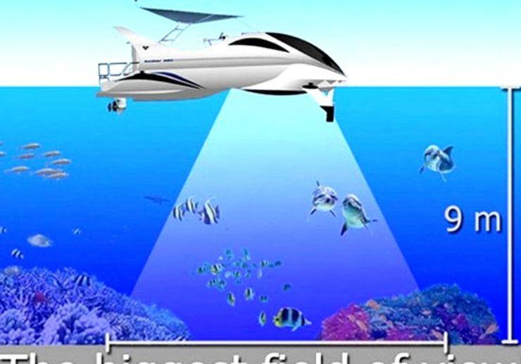 See marine creatures through glass bottom