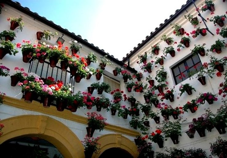 Flower pots adorning hourse in Cordoba