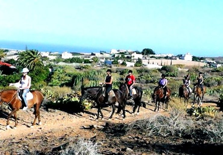 Horseback riding in Maspalomas landscape