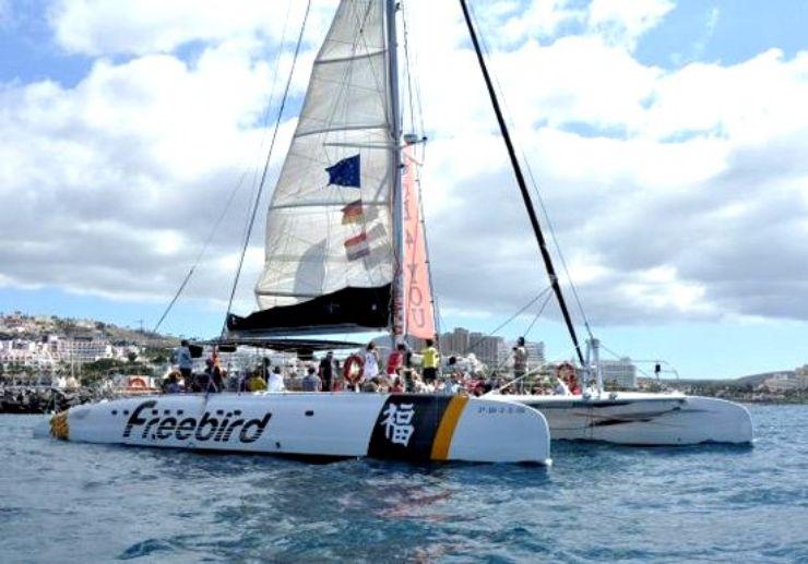 Sail with Freebird One catamaran in Tenerife