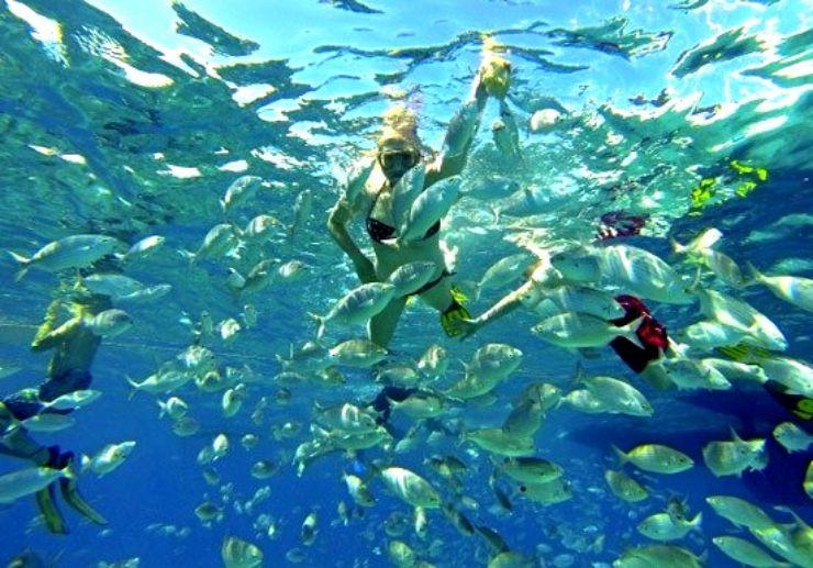La Concha beach swimming and snorkelling