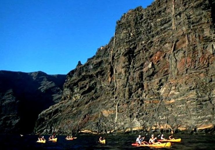 Los Gigantes kayak tour and whale watching