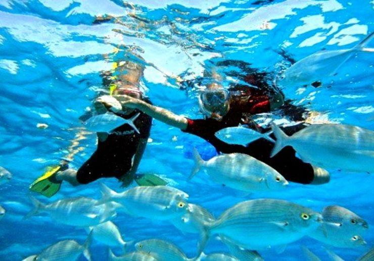 Isla Lobos snorkeling mini cruise