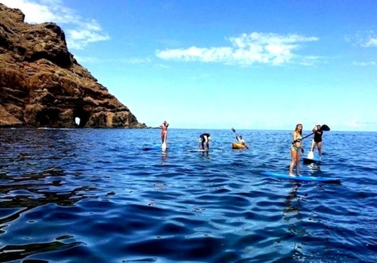 Stand up paddle excursion Tenerife