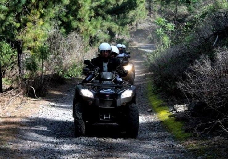 Quad adventure forest track near Teide