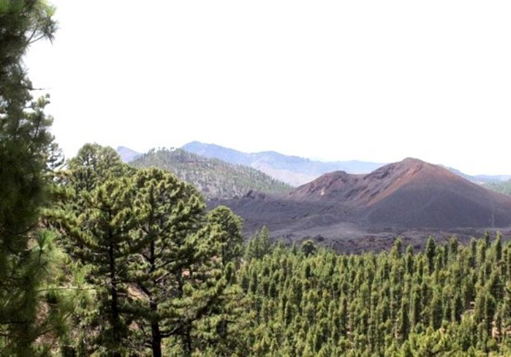 Quad buggy adventure in Teide forest and jetski combo