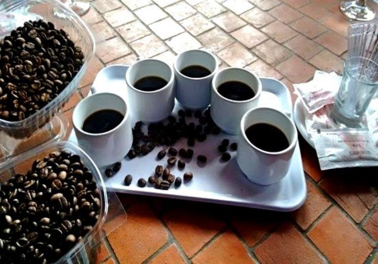 Coffee tasting on Gran Canaria northern tour