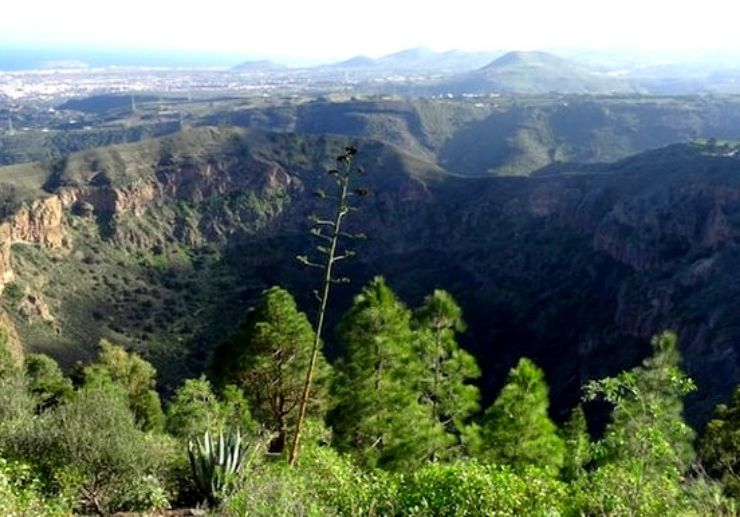 The Bandama volcano in Gran Canaria