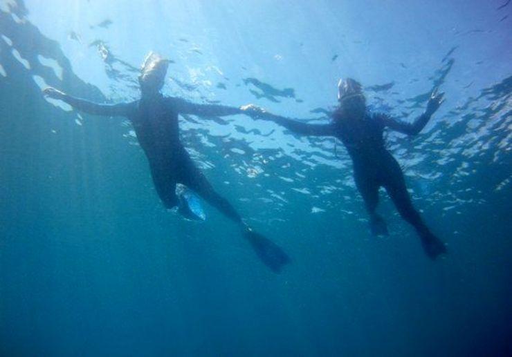 Snorkelling with boat in Fuerteventura