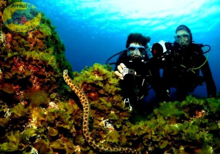 PADI Open Water Diving in El Hierro Canary Islands