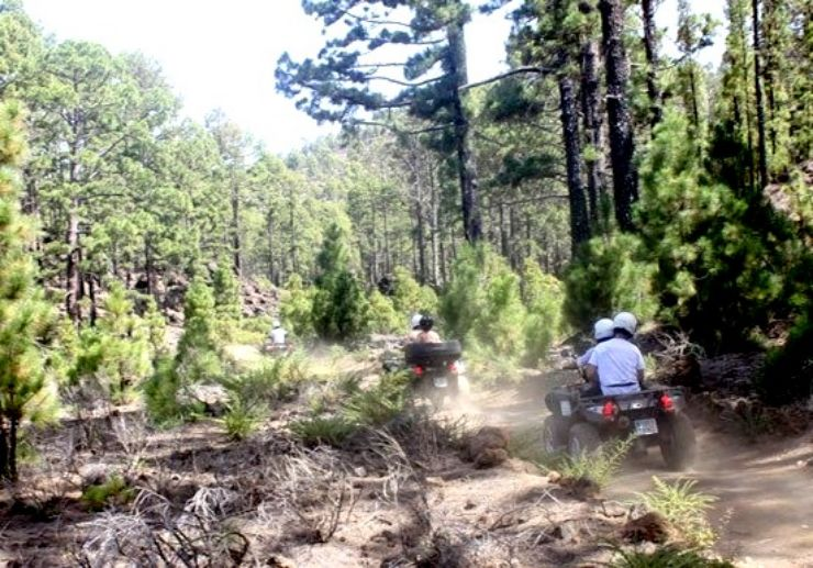 Quad tour in the pine forest of Tenerife