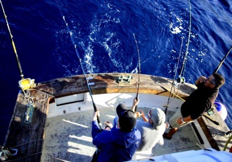 Deep sea fishing Los Gigantes
