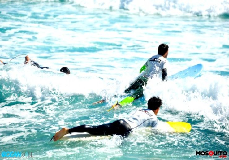 Surf the waves in Fuerteventura