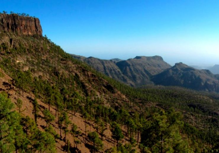Helicopter over lush valley of Gran Canaria