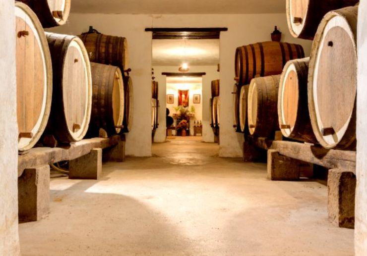 Mocanal winery Gran Canaria