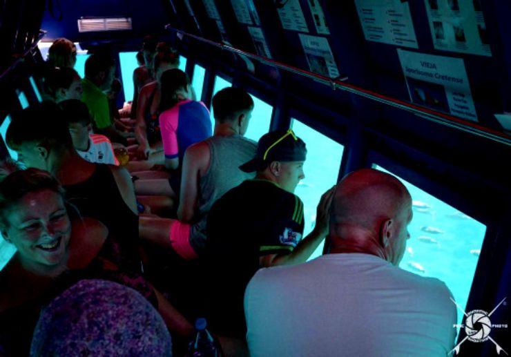 Inside the glass bottom boat