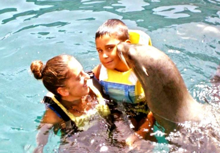 Sea lion kissing a child Fuerteventura