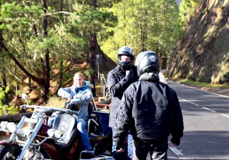 Pine forest of teide trike tour