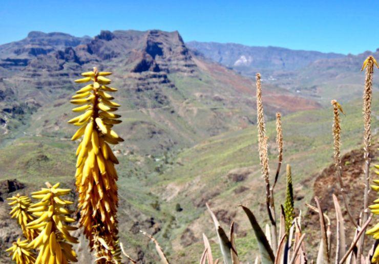 mirador yegua in Gran Canaria