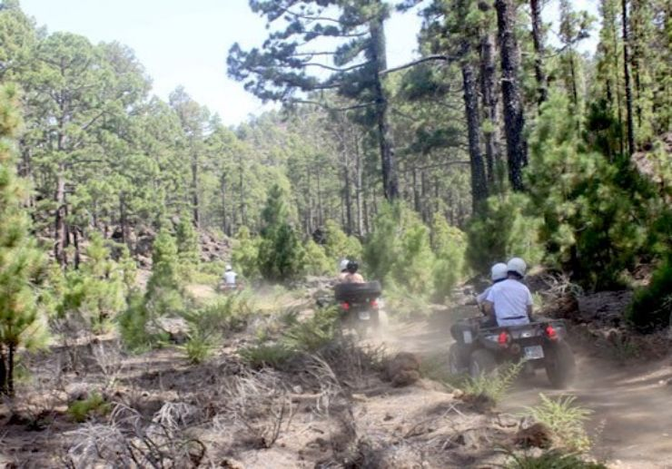 Forest discovery quad excursion in Tenerife