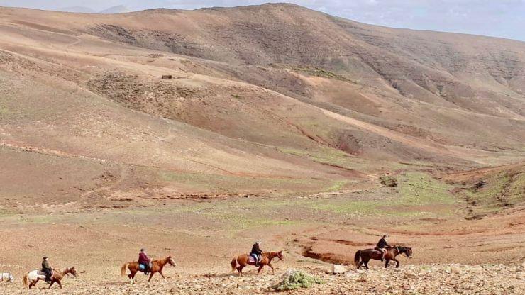 Los Ajaches horse riding in Lanzarote