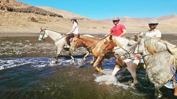 Riding horse on a beach in Lanzarote