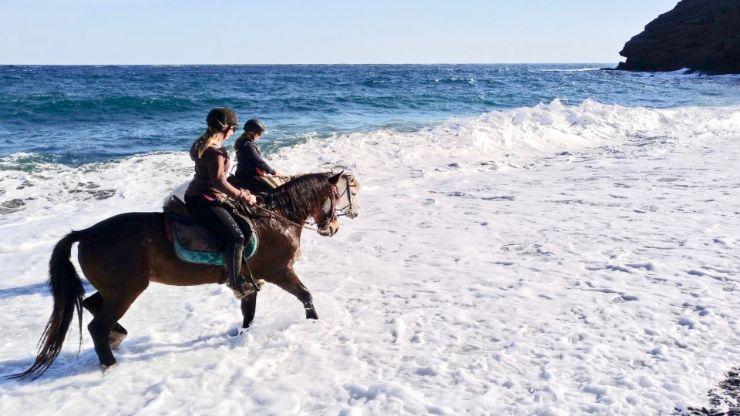 Lanzarote horseback excursion on a beach