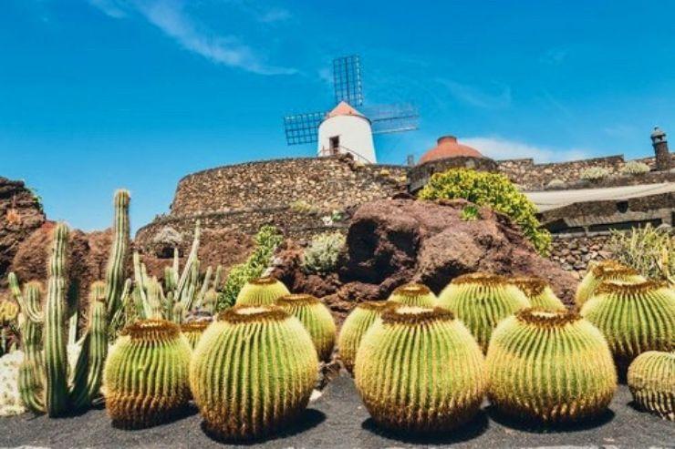 Visit Jardin de Cactus Lanzarote on Cesar Manrique Tour