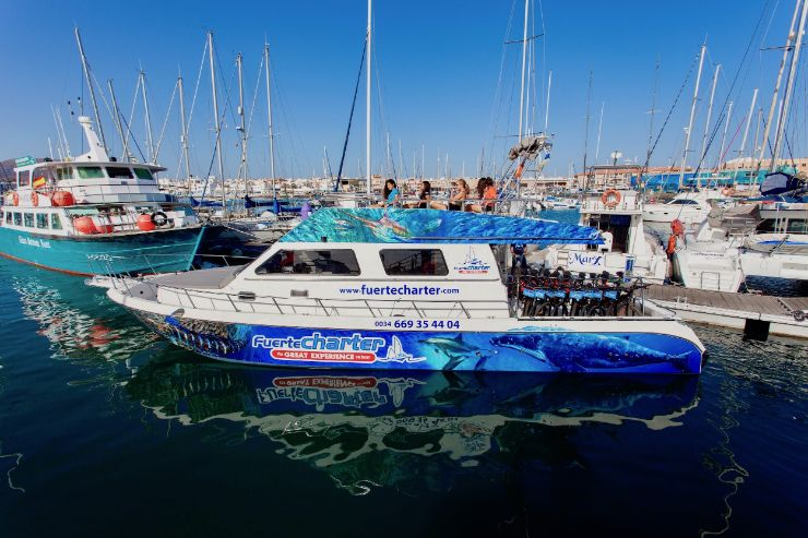 Boat trip to Lobos island departing from Corralejo